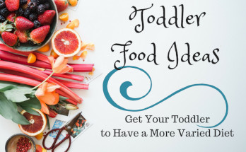 toddler food ideas meals eating