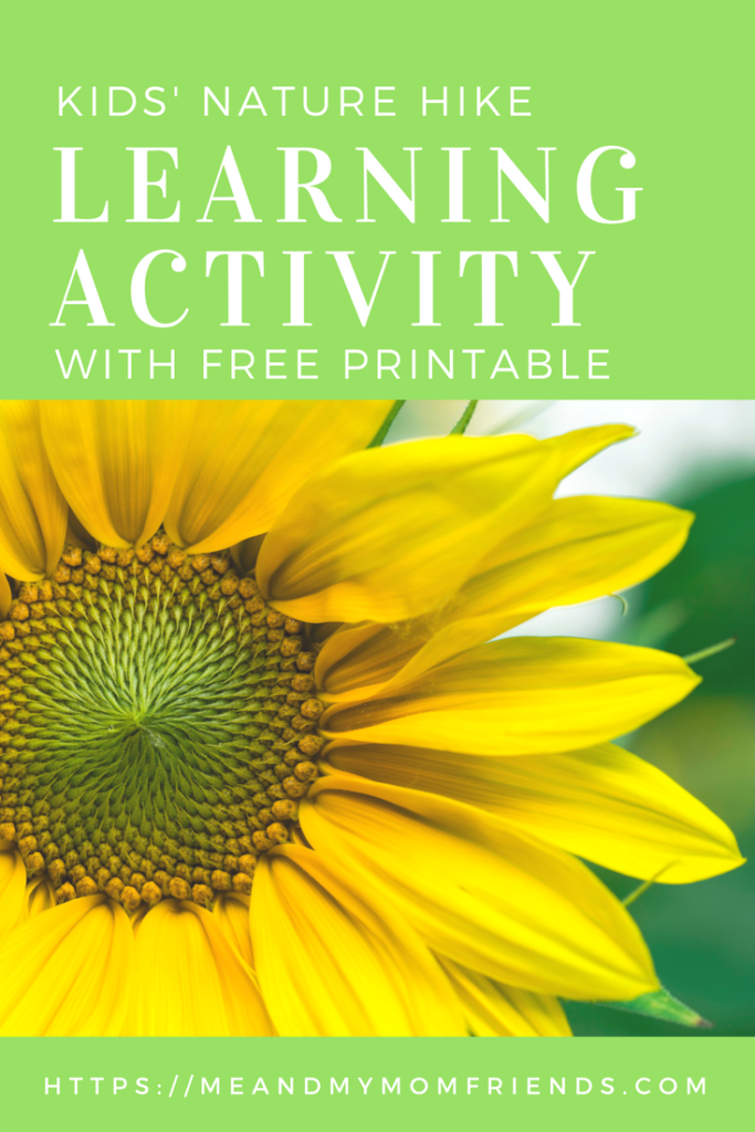 Kids' Nature Hike Learning Activity