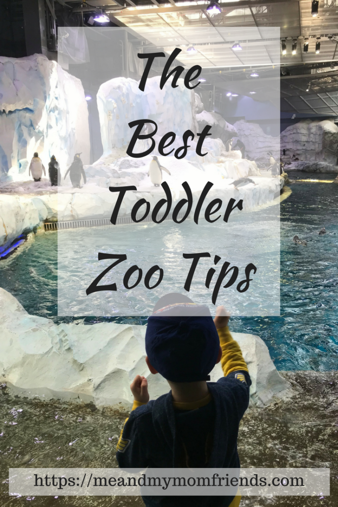 Toddler Zoo Tips